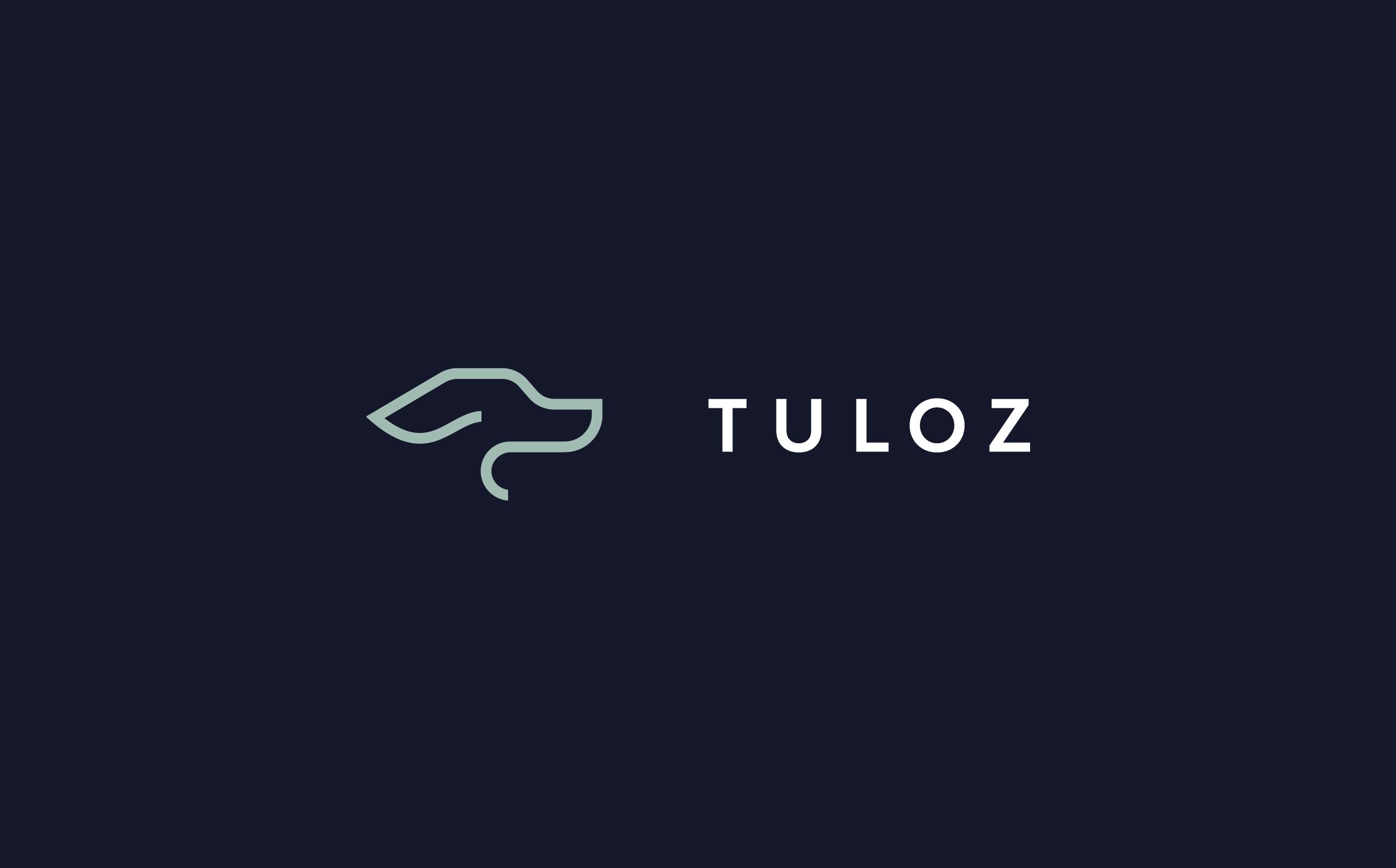 Tuloz_02